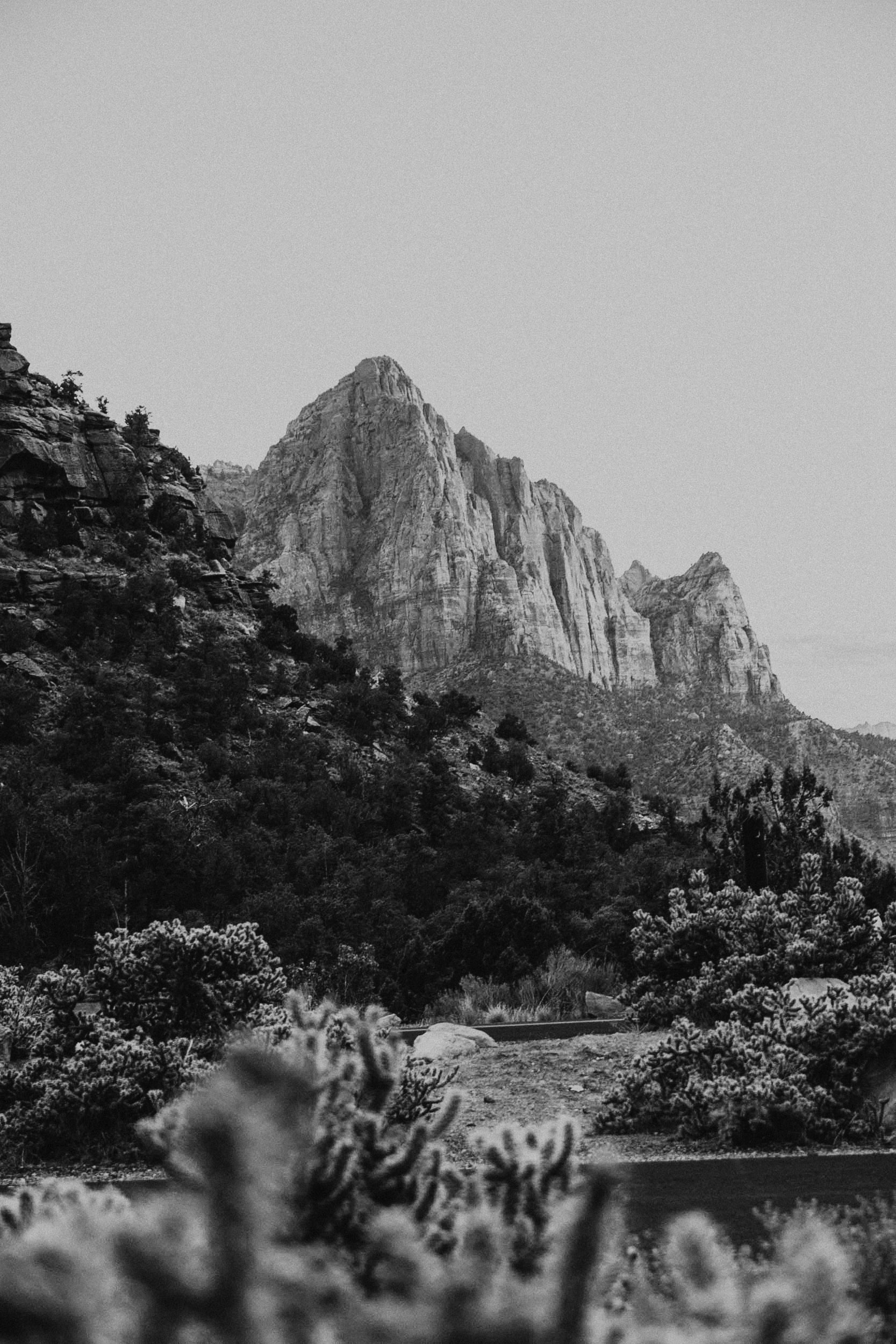 Zion_Utah